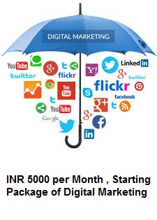 Digital Marketing Packages